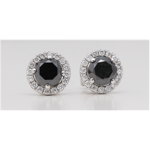 18k Gold Round Diamond Multi-Stone Set Black Enhanced Halo Studs (Black(Irradiated) White Clarity)