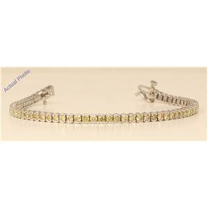 18k White Gold Round Bezel Chic sporty modern classic cup diamond tennis bracelet(3.02 ct, Yellow, VS)